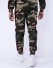 CSBL WCWW Sweatpants woodland camo/navy XL