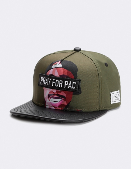 C&S WL Pacasso Cap forrest green/mc one