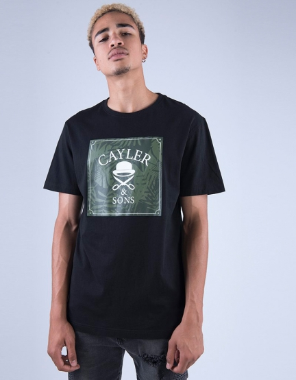 C&S WL Palmouflage Box Tee black/olive XL