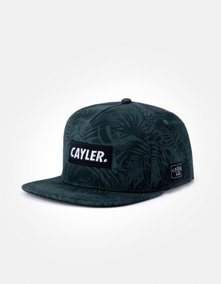 C&S WL Statement Cap green/black one